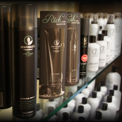 Hair Products (J Beverly Hills, Paul Mitchell Awapuhi, Morrocan Oil, Goldwell)
